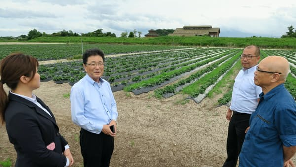 訪日客向け観光農園 石田コーポ、米子で収穫体験 イチゴなど