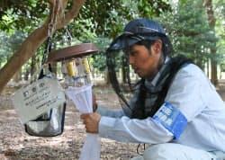 蚊を採取して種類や数を調査(7月31日、東京都渋谷区の代々木公園)