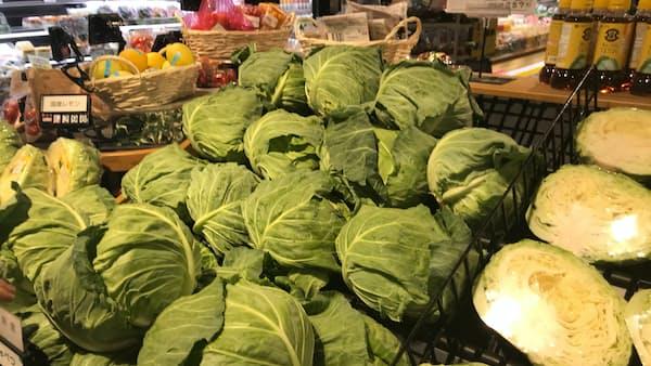 葉物野菜の高騰一服 キュウリやトマトは高く