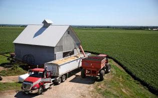 中国の報復関税を受けて、米穀物メジャーは米国産大豆の輸出先を欧州などに振り向けた(イリノイ州の大豆農場)=ロイター