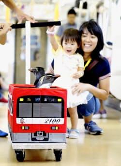 電車内を移動するペンギンを見つめる子供ら(2日、京急電鉄品川―三浦海岸間)=共同