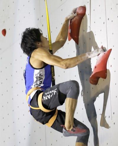 スピードは高さ15メートルのほぼ垂直の壁を1対1で登り、順位とタイムを競う(写真は楢崎智)=共同