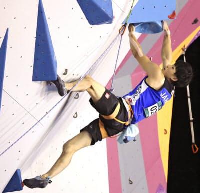 リードは十数メートルの壁を登って到達高度を競う(写真は藤井)=共同