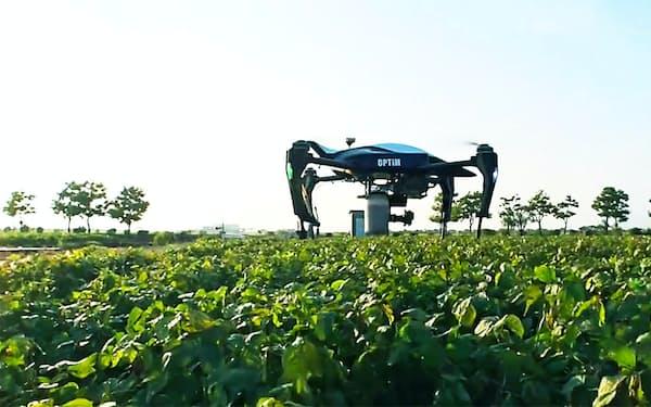 ドローンを活用して農作業の効率化を支援している(佐賀県の農園)