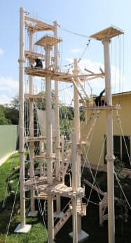 チンパンジーの屋外運動場には、高さ15メートルのタワーを設置した
