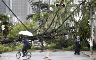 強風で倒れた街路樹(4日、大阪市北区)
