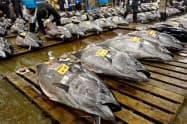 日本が提案した15%の漁獲枠拡大は米国などの反対で見送りとなった