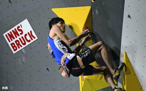男子リード決勝で4位に入った楢崎明智(9日、インスブルック)=共同