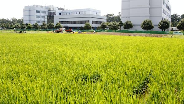 日農薬TOB、米株主が反発 増資と組み合わせ懸念