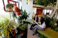 カフェのような机とイスや樹木に囲まれた空間など多様な作業スペースを用意(19日、東京都品川区)