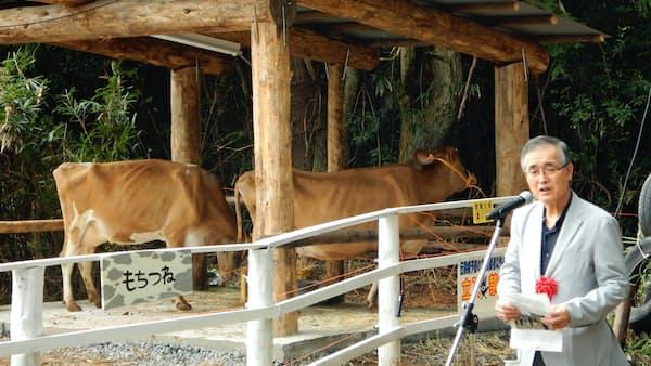 岡山・真庭産「ギー」製造へ バターオイル、ジャージー牛で