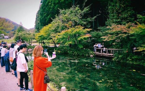 通称「モネの池」にはインスタ映えを求める多くの観光客が訪れる(岐阜県関市)