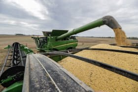中国の報復関税で米国の大豆輸出が落ち込んだ=AP
