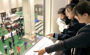 豊洲市場の見学者専用通路からマグロのセリを眺める人たち(18日午前、東京都江東区)
