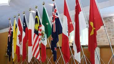 TPP11、19年1月中旬メドに発効へ 政府見通し
