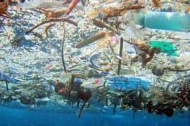 海に浮かんだ大量のプラスチックごみ=米海洋大気局提供・共同