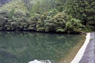 高知県本山町の三山池(8月)=共同