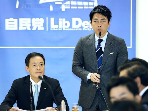 自民党法務部会で厚労部会の決議を述べる小泉厚労部会長(右)(29日午後、党本部)