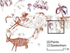 壁画をなぞったイラスト。黒い四角の枠内から4万年前の年代を示す試料が採取された。左下に野生の牛らしき動物が描かれている=研究チーム提供・共同