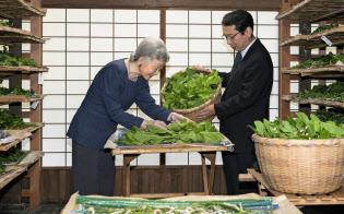 蚕に桑の葉を与える皇后さま(5月、皇居・紅葉山御養蚕所)=宮内庁提供