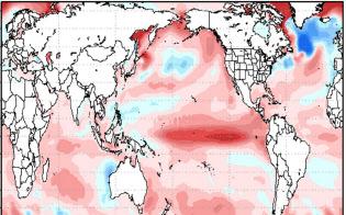 海洋研究開発機構の2018年12月から19年2月までの予想。熱帯太平洋の中央付近の水温が高い「エルニーニョ・モドキ」の傾向がある。赤が濃いほど水温が高く、青は低い。