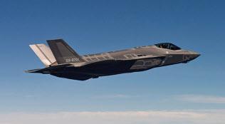 日本政府は米国からF35戦闘機を最大100機追加取得する=空自提供