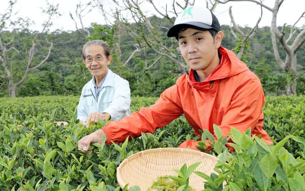 金川製茶の比嘉竜一代表。左は先代の猛さん