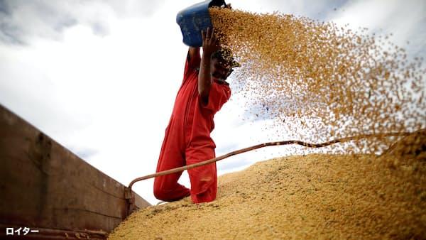 大豆、底入れ後も上値重く 米中「休戦」に不透明感