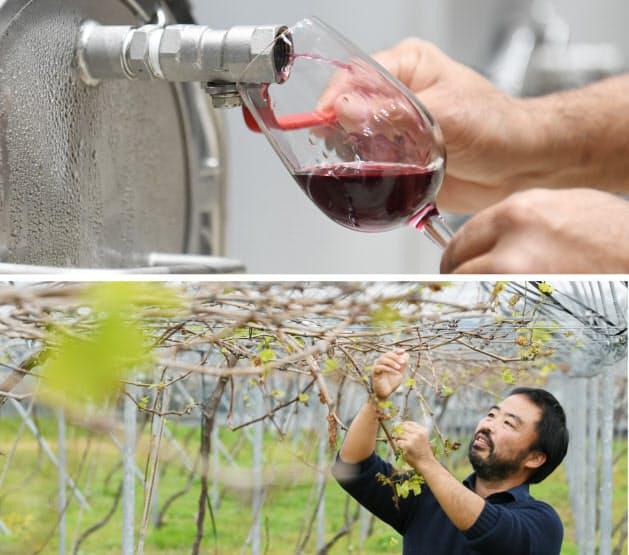 香月さん(写真下)が栽培したブドウで作ったワイン(宮崎県綾町)