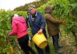 英国の農家で働く移民労働者=ロイター