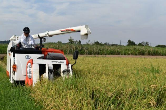 「減反」廃止2年目 増産進まず米価高懸念