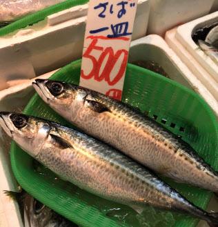 日本で漁獲?#20025;欷皮い?#39770;で最も多いのがサ?#26657;?#26481;京?豊洲市場)