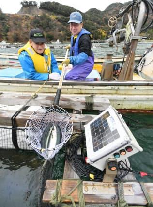 サバのいけすに設置されたIoT機器で海水の温度や塩分濃度などを測定、分析する(福井県小浜市)