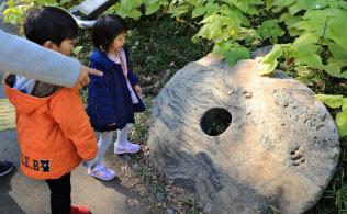 ヤップ島から寄贈された古代の貨幣「石貨」(東京都千代田区の日比谷公園)