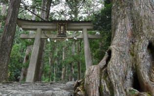熊野那智大社の別宮である飛瀧神社の鳥居
