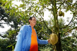 収入が急増したと語ったドリアン農家のルンさん(18年12月、タイ中部チャンタブリ県)