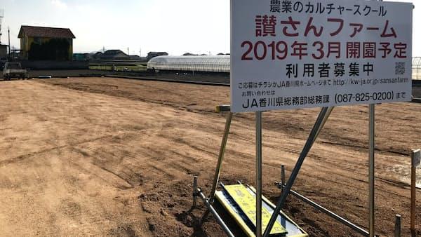 JA香川が体験農園、農業の担い手育成 耕作放棄地の転用見込む
