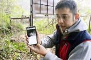 イノシシを捕獲する箱わなの前でスマートフォンに届いた画像を見せてくれた宮川さん(熊本県宇城市)=共同