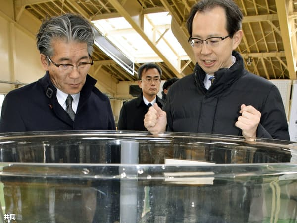 完成した水産資源研究所で稚魚を観察する福島県の内堀雅雄知事(右)ら(1日午前、福島県相馬市)=共同