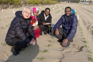 乾燥地研究センターは広大な砂の栽培実験場を持つ(左が辻本教授、右がヤシル特命助教、中央2人はスーダンの留学生)
