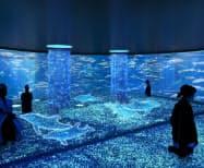 仮想現実(VR)やCGなどを活用する水族館を作る(写真はイメージ)