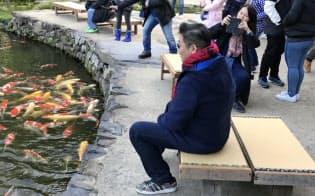 栗林公園には多くの中国人観光客が訪れている(5日、高松市)