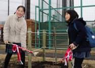 大蔵第二運動場でハナミズキの苗木を植樹する子供たち(9日、東京・世田谷)