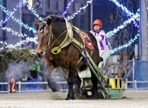ばんえい競馬史上最多の19連勝に並んだホクショウマサル(10日、北海道帯広市の帯広競馬場)=主催者提供・共同