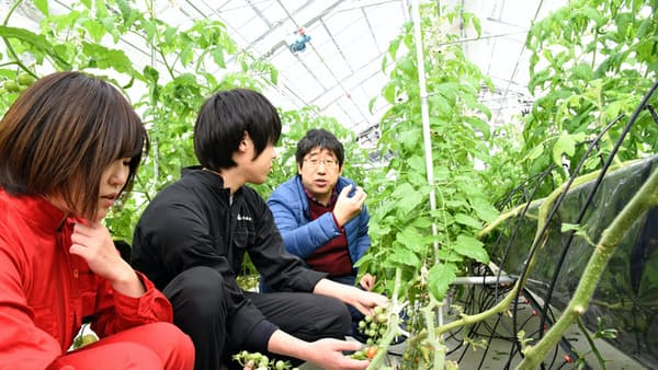大学・学部新設で農業に新風 6次産業化へ人材育成