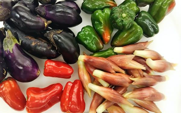 変形や変色などのため流通ルートに乗らない格外野菜