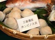 ホンビノス貝は船橋市周辺で豊富に取れる