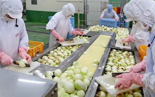 ピエトロはパスタソースなどの売り上げを伸ばし、経常利益が23%増えた(福岡県古賀市の工場)