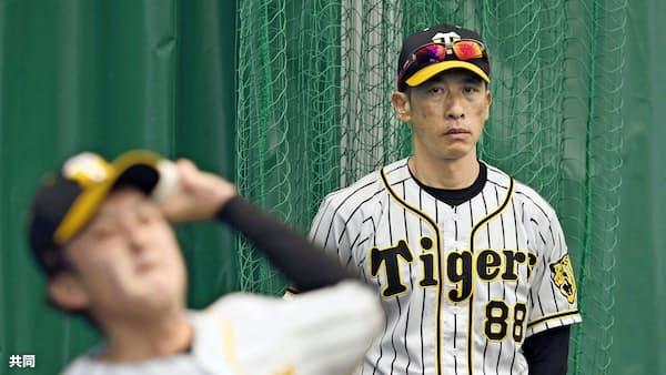 阪神・矢野監督、投手力底上げへ浜地ら若手競わす