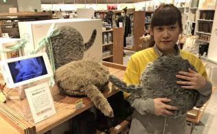 ロフトなどで売れ行き好調なセラピーロボットのクーボ(東京都中央区のロフト銀座店)